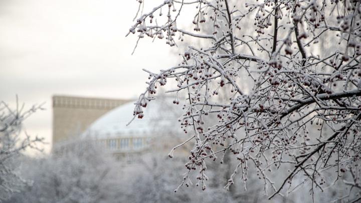 Дойдут ли до Новосибирска снегопады, которые парализовали Москву? Прогноз от синоптиков