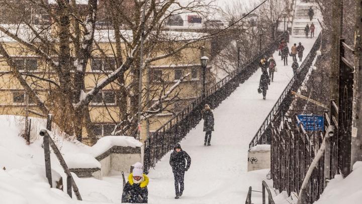 В Новосибирск возвращается зима: синоптики дали прогноз на длинные выходные