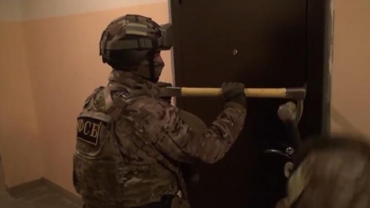 ФСБ с полицией поймали новосибирцев, подозреваемых в незаконной вырубке. Задержание попало на видео