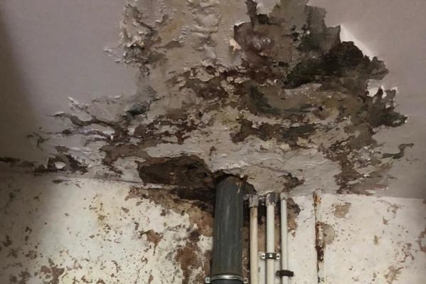 Много лет стены сыреют и падает штукатурка