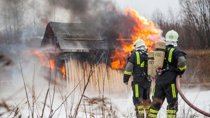 В Архангельске полиция задержала ещё одного подозреваемого в поджогах