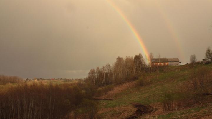 В 11 районах Архангельской области во второй половине дня ожидаются грозы