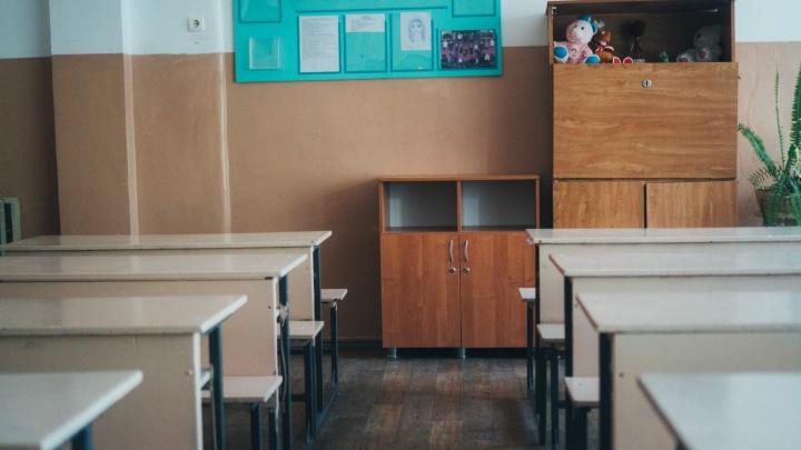 В Омской области из-за коронавируса закрыли ещё две сельские школы
