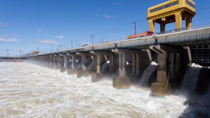 В Волгограде с Волжской ГЭС снизили сбросы воды — появилась мошка