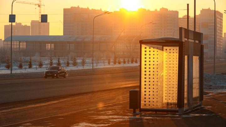 Власти Кемерово потратят на озеленение и благоустройство районов города 200 млн рублей