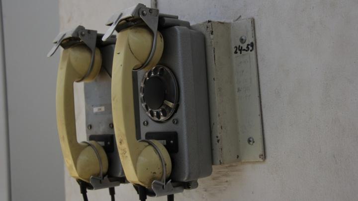 Дозвониться невозможно: волгоградцы жалуются на неработающий телефон горячей линии по выдаче масок
