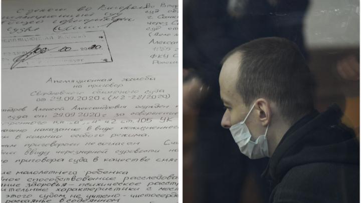 «Я раскаялся»: публикуем полный текст апелляции уктусского стрелка на пожизненный срок
