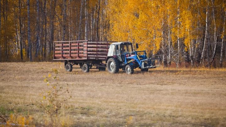 В Зауралье сотрудник крестьянско-фермерского хозяйства присвоил трактор работодателя