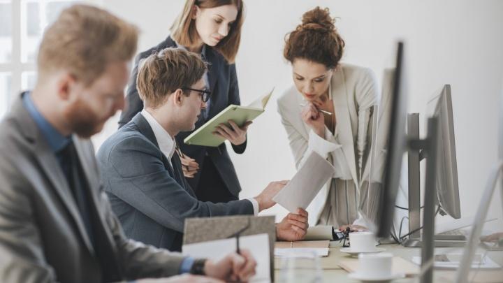 Заявить о себе и своем деле: предпринимателей Поморья пригласили стать бизнес-амбассадорами
