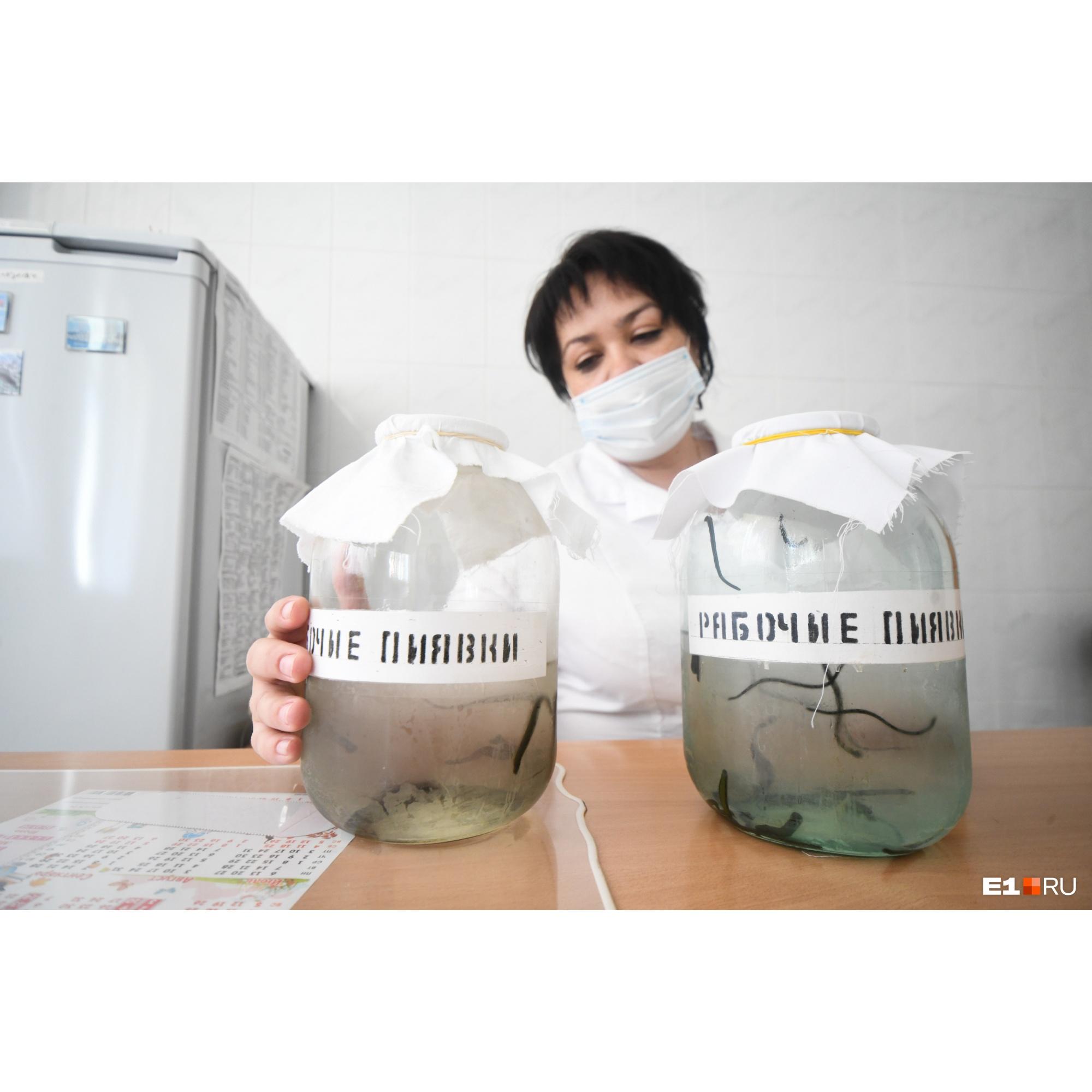 Анатолий Иванович лечил пациентов пчелиным ядом и пиявками. Многие пациенты ехали в госпиталь ВОВ только ради этих процедур