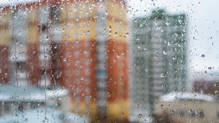 На выходных в Омской области ожидают мокрый снег и сильный ветер