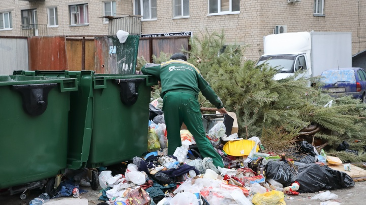 «Убираем раз в неделю и делаем перерасчет»: дворы Дзержинского района Волгограда зарастают мусором