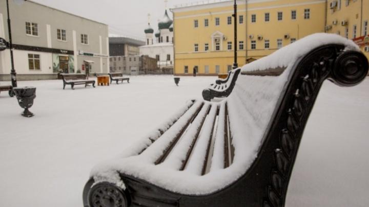 Приступ снежности: как преобразился Ярославль за одну ночь и день