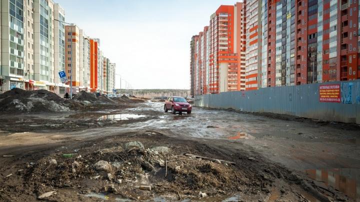 На Северо-Западе Челябинска появится аллея, какой она будет — обсудят с горожанами... дистанционно