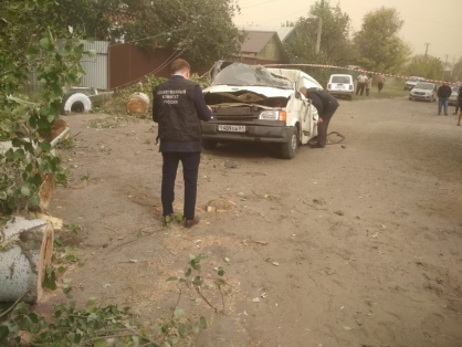 После гибели людей из-за упавшего дерева на Дону возбудили уголовное дело