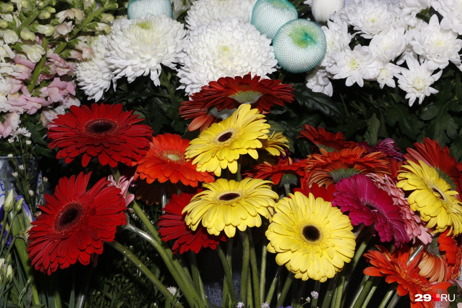 Яркие цветные ромашки отлично впишутся в композицию для мамы, сестры или подруги