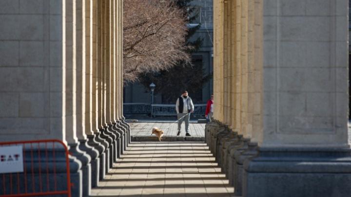 Новосибирца оштрафовали на 1000 рублей за прогулку в парке. Он отдалился на «две остановки от своего дома»