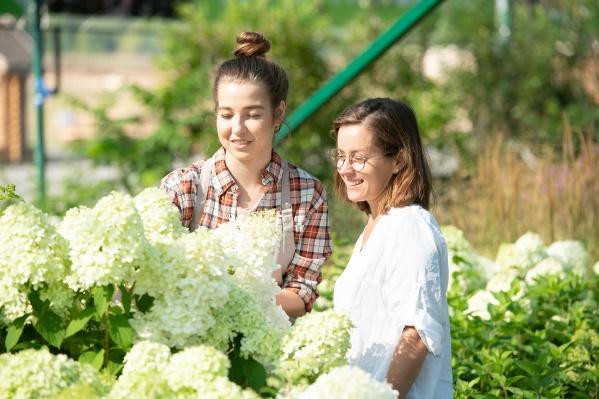Ещё один новый садовый центр «Исаковский» открылся этим летом в самом центре города