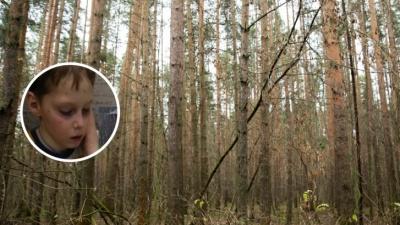 «Замёрз и сильно напуган»: в Ярославской области 9-летний Саша Волков провёл всю ночь в лесу. Видео