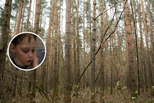 9-летний Саша Волков всю ночь провёл один в лесу