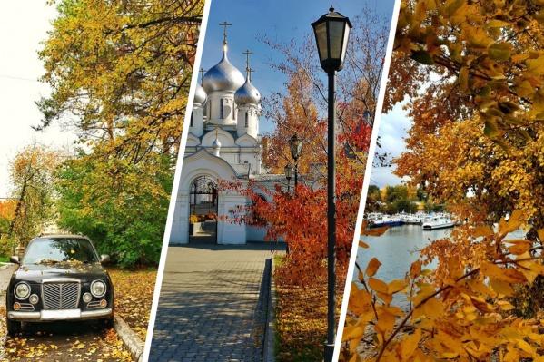 Такой видят осень новосибирцы