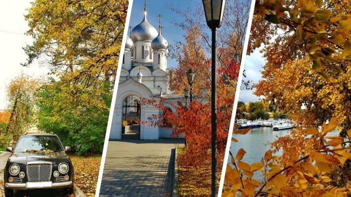 Никаких дождей и промозглой погоды: 30 теплых фотографий, каким был сентябрь в Новосибирске