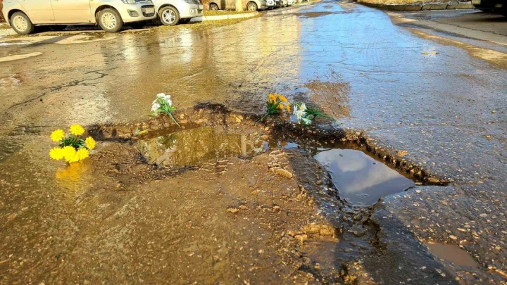 В Самаре жители высадили цветы в яму на дороге