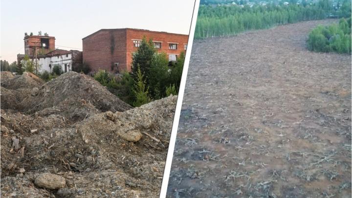 Рудник, в честь которого назвали целый район в Нижнем Тагиле, уничтожат