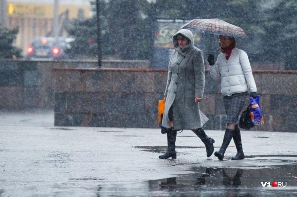 Волгоград может остаться без большого снега