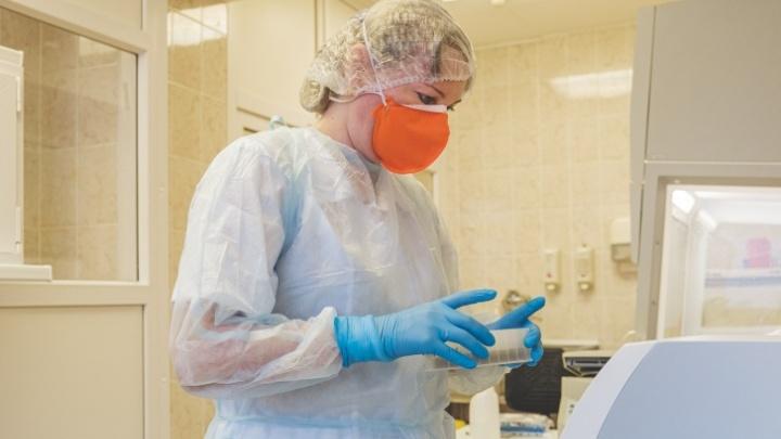 С начала пандемии в Пермском крае выявили более 23 тысяч случаев коронавируса