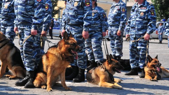 На Урале полицейские ликвидировали интернет-магазин наркотиков, который за год заработал 10,5 млн рублей