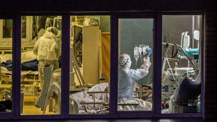 Повторили антирекорд: за сутки коронавирусом заболели еще 186 новосибирцев