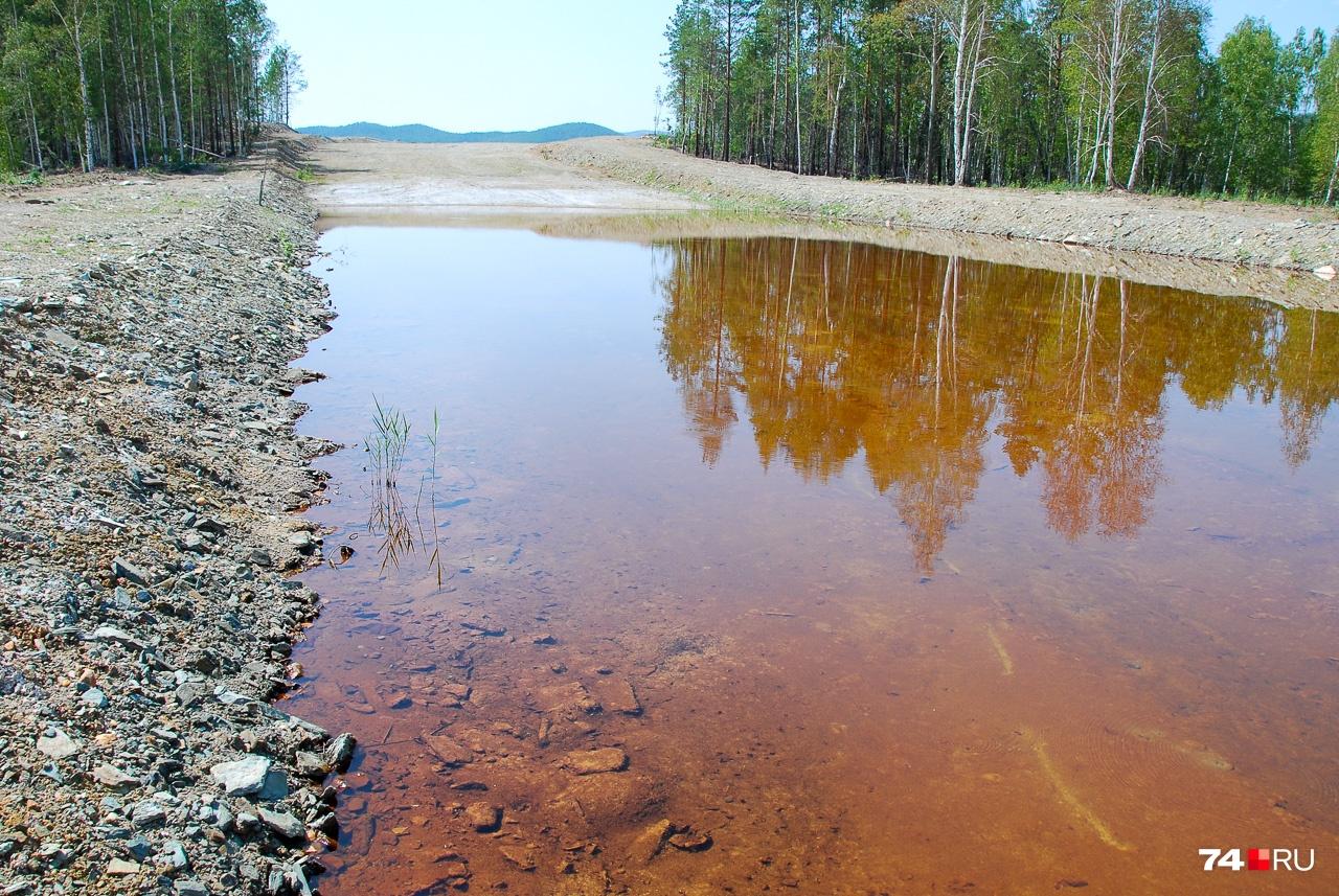 На дальнем плане виден тот самый горб, за которым — гидроботанический пруд. Вода в канале рыжая