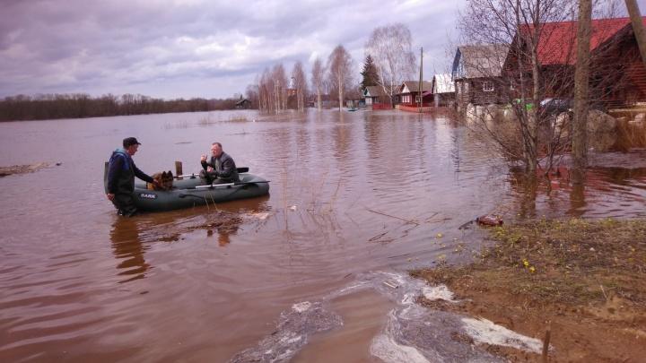 Из-за паводка в Вельском районе ввели режим ЧС