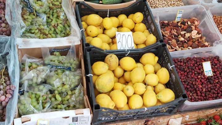 450 рублей за килограмм: как ажиотаж вокруг лимонов в Уфе поднял цену на них в пять раз