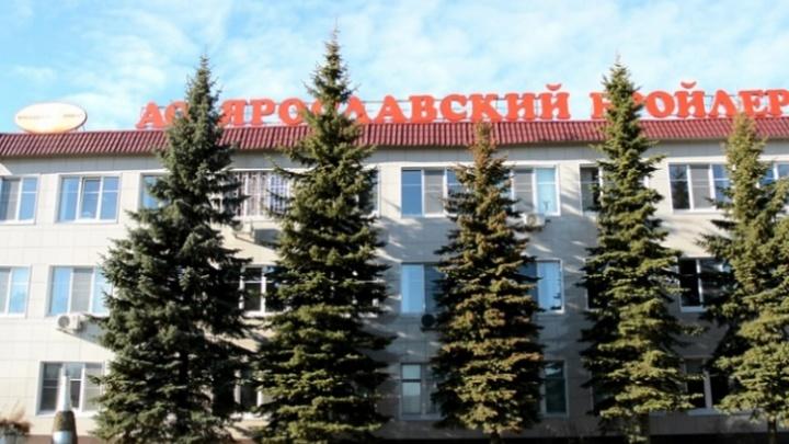 Куриное филе от ярославского производителя попало в эфир федерального телеканала