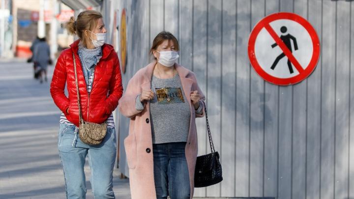 Губернатор разрешил прогулки на свежем воздухе. Хроника COVID-19 в Красноярске, день 28-й