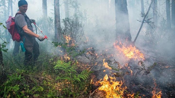Башкирия израсходовала весь бюджет на тушение лесных пожаров