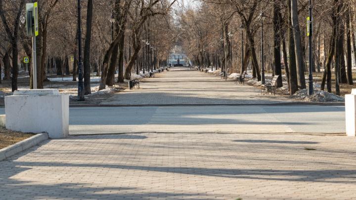 В Прикамье ближайшие дни будут теплыми и дождливыми