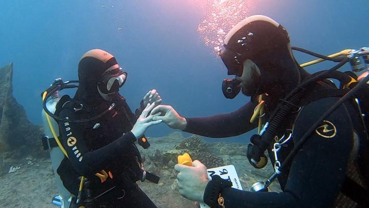 Анестезиолог из Екатеринбурга сделал своей девушке предложение на носу затонувшего корабля. Видео