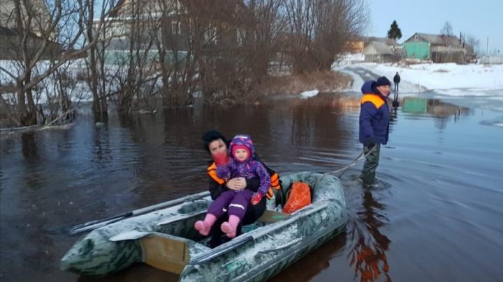 Придется отправить ледокол: как из-за затора льда подтопило деревню в Холмогорском районе