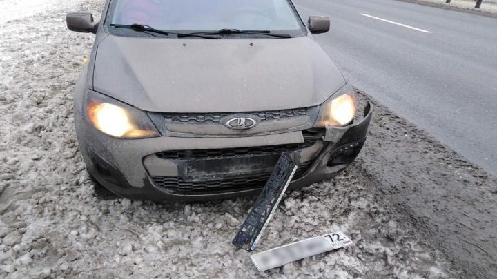 На окраине Тюмени водитель сбил косулю и причинил государству ущерб в размере 40тысяч рублей