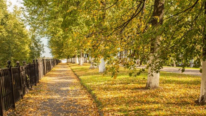 «Встретятся лето и осень»: синоптики рассказали, какой будет первая неделя сентября