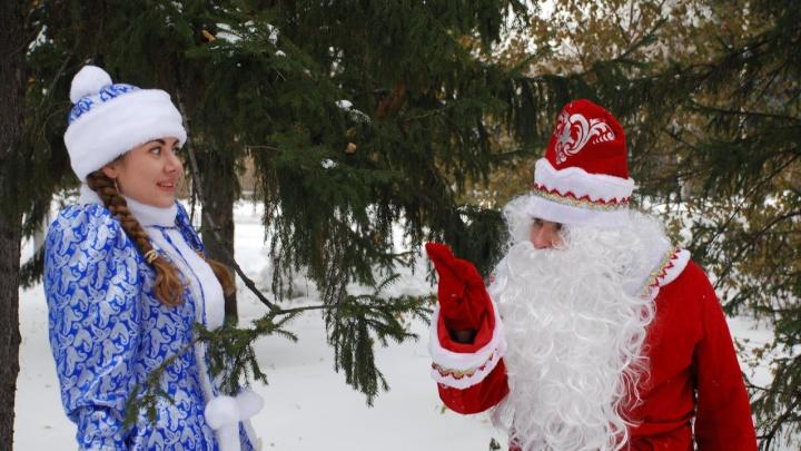 Губернаторскую елку в Омске из-за коронавируса покажут в соцсетях