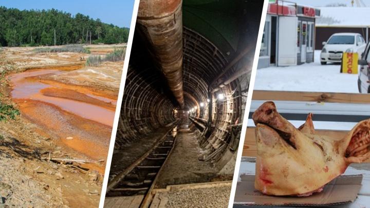 Этюд в рыжих тонах, челябинское подземелье и фабрика спецкостюмов: вспоминаем репортажи года на 74.RU