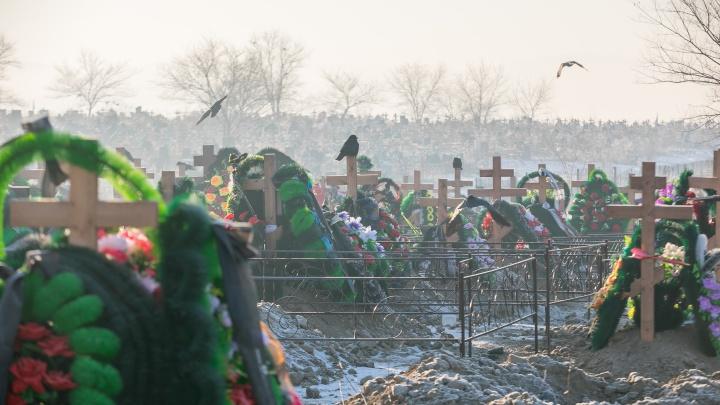 Гектары новых могил: репортаж с двух самых больших кладбищ в Красноярске