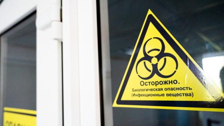 Еще 13 жителей Ростовской области умерли от COVID-19