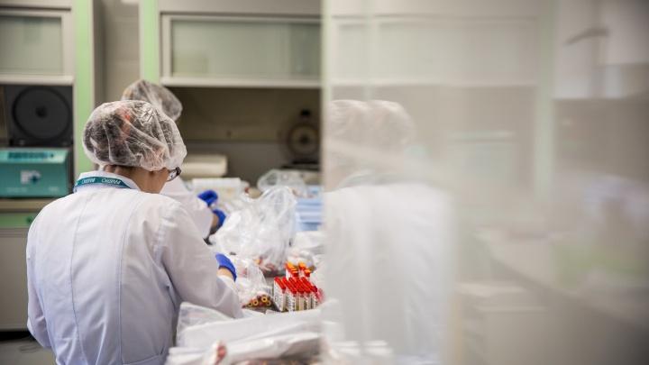 Трое из пяти новых зараженных коронавирусом тюменцев — в среднетяжелом состоянии