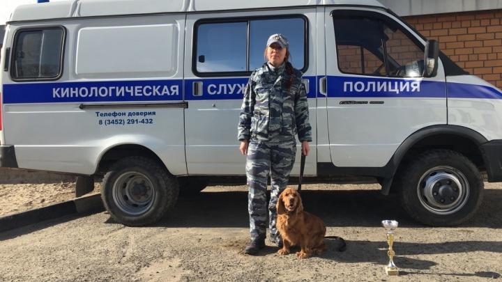 Тюменская полицейская собака нашла мужчину, который на сутки потерялся в лесу