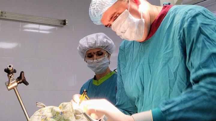 Семеро тюменцев попали в реанимацию с травмой ныряльщика